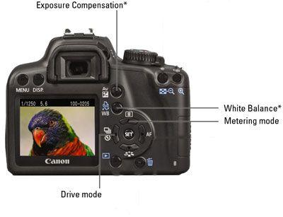 Einige wichtige Steuerelemente auf einer Canon EOS Rebel XS / 1000D.