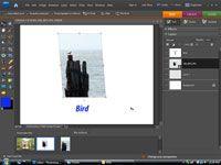 ���� - Anzeige von digitalen Fotos im Internet
