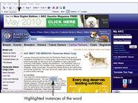 ���� - Für Senioren: Suchen Sie eine Webseite mit Internet Explorer