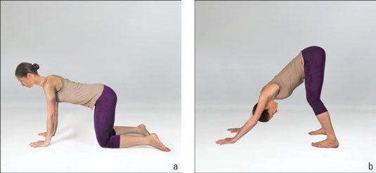 ���� - Wie abwärtsgerichteter Hund Posture (Adhomukha Shvanasana) in Yoga zu tun