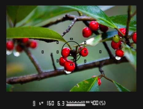 ���� - Wie man Sperren Sie die Blitzbelichtung auf Ihre Canon EOS 6D