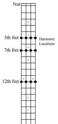 Die wichtigsten Harmonischen auf einer Bassgitarre.