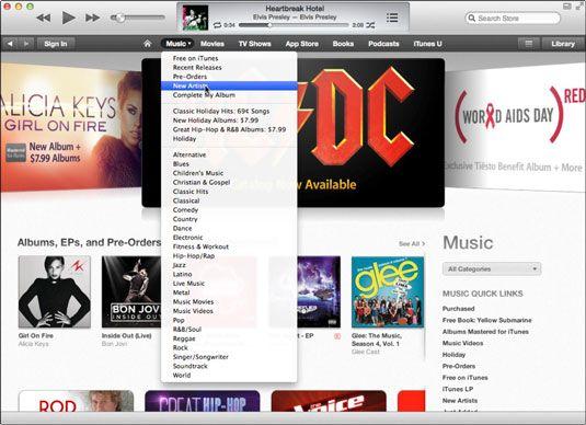 ���� - Einführung in die iTunes Multimedia Mall