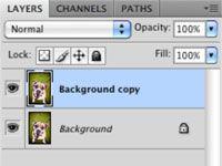 ���� - Hintergrund entfernen Ablenkungen von Ihrem Hund Fotografien