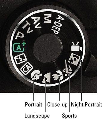 ���� - Szenenmodus-Einstellungen auf einer Canon EOS Rebel T3 Serie Kamera