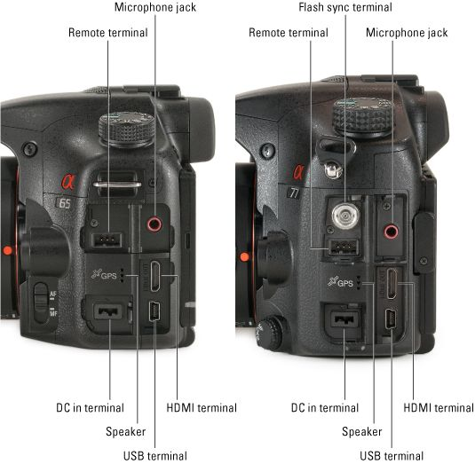 ���� - Sony Alpha SLT-A65 / A77 für Dummies