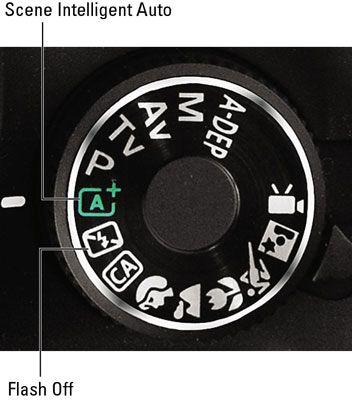 ���� - Nehmen Sie Fotos in Auto, Blitz aus, mit einer Canon EOS Rebel T3 Serie Kamera