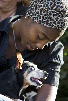 ���� - Machen Sie Fotos von Hunden in den Laps von ihren Menschen