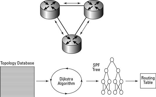 ���� - Arbeiten mit Open Shortest Path First (OSPF) Routing Protocol